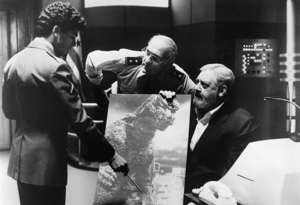 Raymond Burr Movies Cineplex com  Raymond Burr