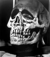 HALLOWEEN III: SEASON OF THE WITCH, Tom Atkins, 1982, (c) Universal