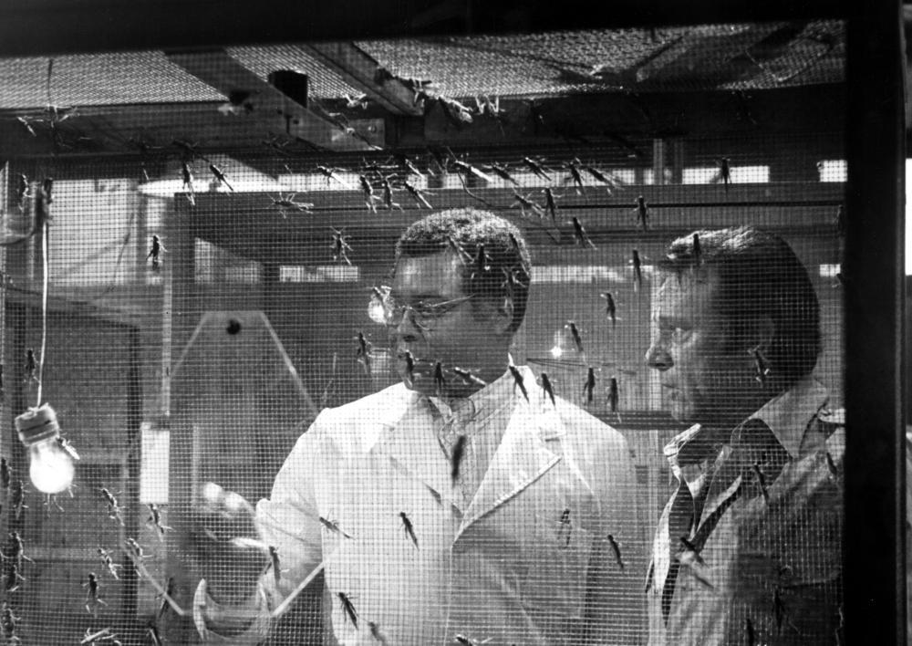 EXORCIST II: THE HERETIC, James Earl Jones, Richard Burton, 1977.  (c) Warner Bros..