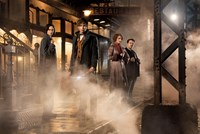 FANTASTIC BEASTS AND WHERE TO FIND THEM, from left: Katherine Waterston, Eddie Redmayne, Alison Sudol, Dan Fogler, 2016. ph: Jaap Buitendijk/© Warner Bros.