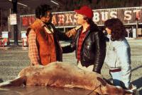 STARMAN, from left: Ted White, Jeff Bridges, Karen Allen, 1984, © Columbia