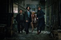 FANTASTIC BEASTS AND WHERE TO FIND THEM, from left, Dan Fogler, Katherine Waterston, Alison Sudol, Eddie Redmayne, 2016. ph: Jaap Buitendijk. © Warner Bros.