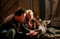 RACING STRIPES, Bruce Greenwood, Hayden Panettiere, Stripes the zebra, 2005, (c) Warner Brothers