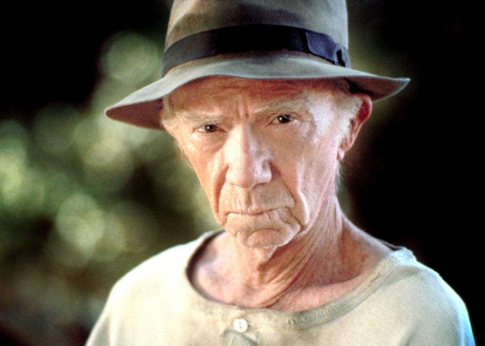 ray walston net worth