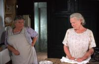 LADIES IN LAVENDER, Miriam Margolyes, Judi Dench, 2004