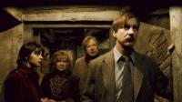 HARRY POTTER AND THE HALF-BLOOD PRINCE, from left: Natalia Tena, Julie Walters, Mark Williams, David Thewlis, 2009. ©Warner Bros.