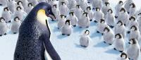 HAPPY FEET, Miss Viola (front, left, voice: Magda Szubanski), Mumble (center, surrounded, small, voice: Elizabeth Daily), 2006. ©Warner Bros.