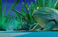 THE ANT BULLY, Zoc, (voiced by Nicolas Cage), Frog, (voiced by Frank Welker),  2006, © Warner Bros./