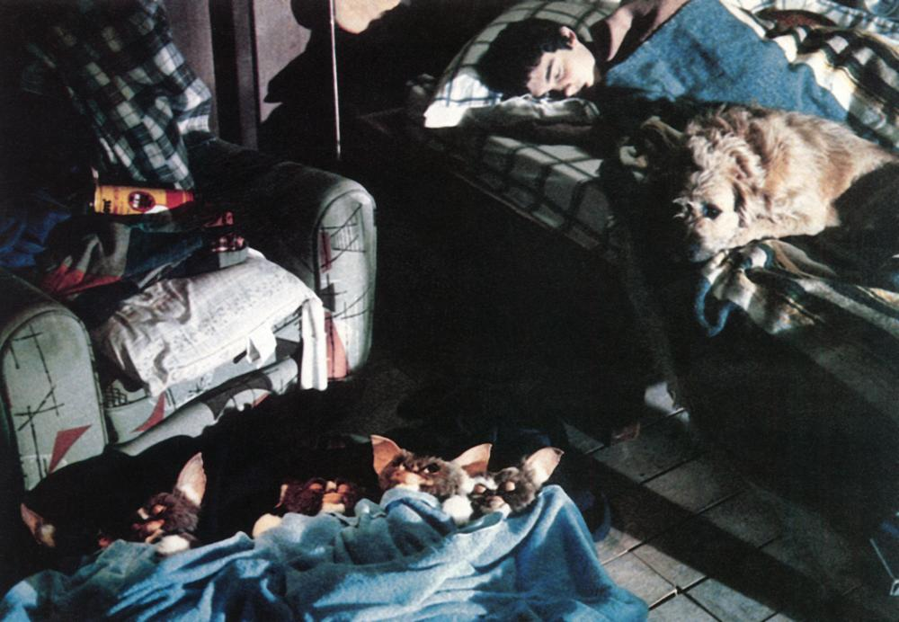 GREMLINS, Zach Galligan (r.), 1984, (c)Warner Bros.