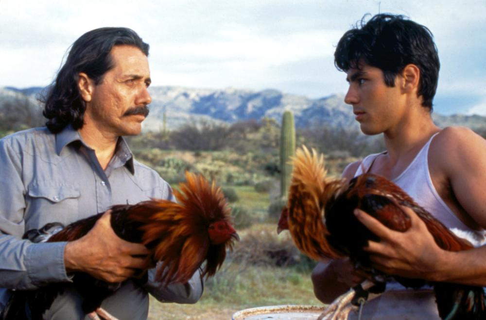 ROOSTERS, Edward James Olmos, Danny Nucci, 1993
