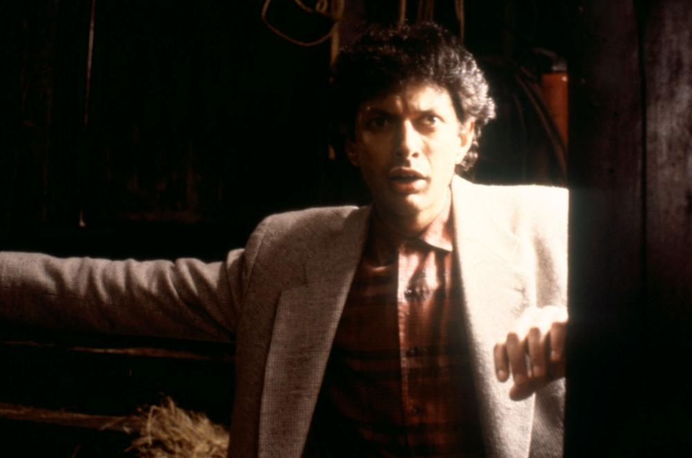 TRANSYLVANIA 6-5000, Jeff Goldblum, 1985, © New World Pictures