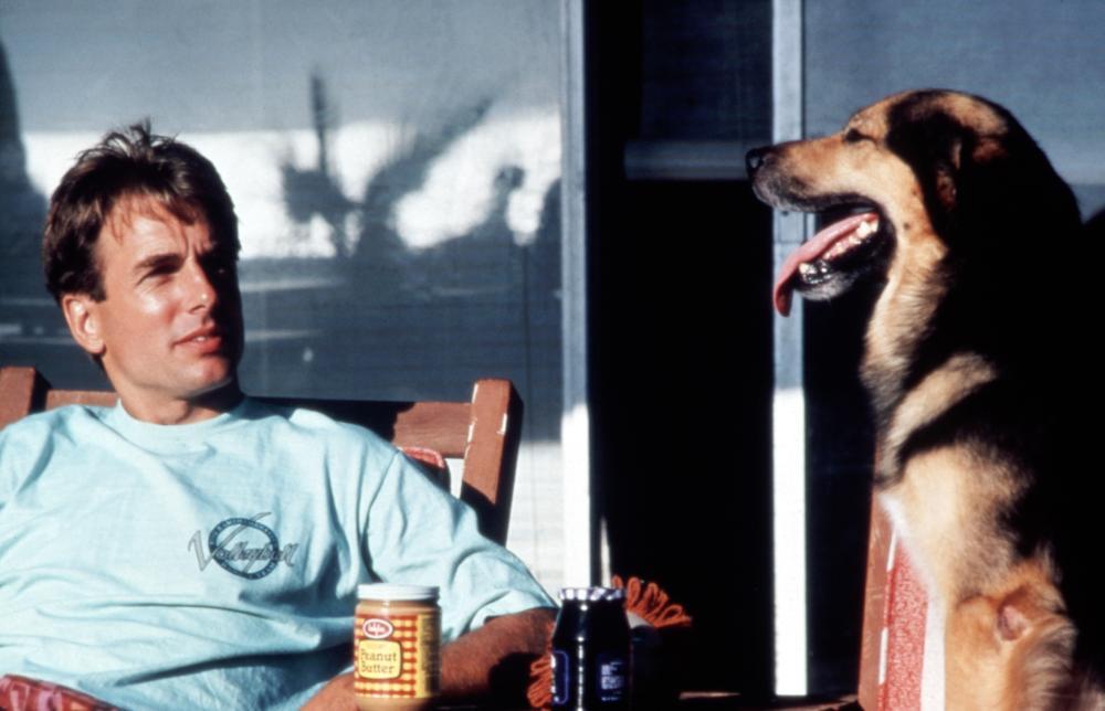 SUMMER SCHOOL, Mark Harmon, 1987. (c) Paramount Pictures.