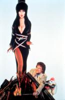ELVIRA, MISTRESS OF THE DARK, Cassandra Peterson as Elvira, 1988. (c)New World Pictures.
