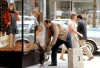 CAT'S EYE, Tony Munafo, 1985, (c)MGM