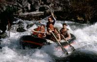 UP THE CREEK, Stephen Furst, Tim Matheson, Dan Monahan, Sandy Helberg, 1984, (c)Orion Pictures