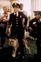 POLICE ACADEMY 5: ASSIGNMENT: MIAMI BEACH, Leslie Easterbrook (far left), G. W. Bailey (second from left), Bubba Smith (third from left), 1988. ©Warner Bros
