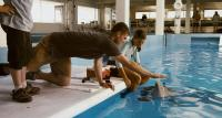 DOLPHIN TALE, from left: Austin Stowell, Austin Highsmith, 2011. ©Warner Bros. Pictures