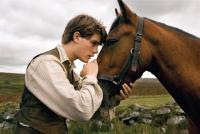 WAR HORSE, Jeremy Irvine, 2011. ph: Andrew Cooper/©Touchstone Pictures