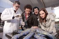GRABBERS, l-r: Russell Tovey, Richard Coyle, Lalor Roddy, Ruth Bradley, 2012, ph: Jonathan Hession/©IFC Midnight