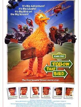 Follow That Bird - A Family Favourites Presentation