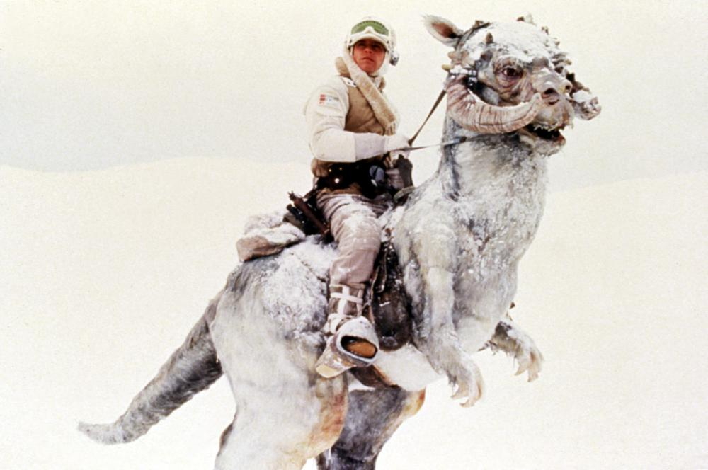 THE EMPIRE STRIKES BACK,  Mark Hamill riding a tautaun, 1980, Lucasfilms /