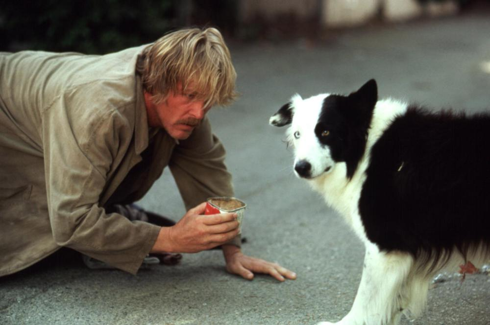 DOWN AND OUT IN BEVERLY HILLS, Nick Nolte, Mike the dog, 1986, on all fours