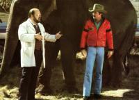 SMOKEY AND THE BANDIT II, Dom DeLuise, Burt Reynolds, 1980, © Universal