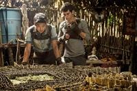 THE MAZE RUNNER, from left: Ki Hong Lee, Dylan O'Brien, 2014. ph: Ben Rothstein/TM and ©Copyright 20th Century Fox Netherlands. All rights reserved.